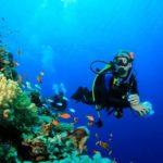 Практические занятия в море по курсу PADI Open Water Diver