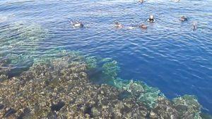 Отлив в Красном море