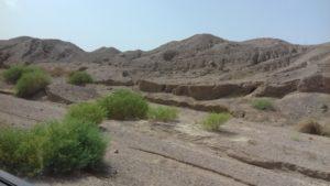 Пустынные пейзажи заповедника Рас-Мохамед